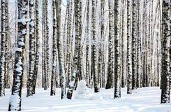 Muñeco de nieve en bosque del abedul del invierno Imágenes de archivo libres de regalías