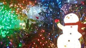 Muñeco de nieve en invernadero Imágenes de archivo libres de regalías