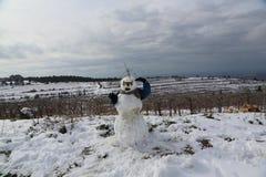 Muñeco de nieve en Israel Imagen de archivo libre de regalías