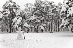 Muñeco de nieve en las nevadas imagen de archivo libre de regalías