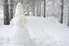 Muñeco de nieve en parque del invierno en el sombrero Imagenes de archivo