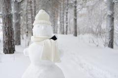 Muñeco de nieve en parque del invierno usando el teléfono elegante Imagen de archivo