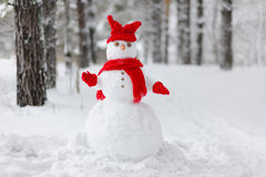 Muñeco de nieve en un bosque del invierno Fotografía de archivo libre de regalías