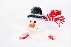 Muñeco de nieve feliz de la Navidad del invierno con la zanahoria en sombrero negro Imagen de archivo libre de regalías