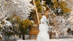 Muñeco de nieve de fusión en el sol metrajes