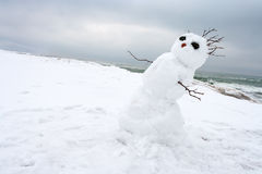 Muñeco de nieve loco, de fusión en una playa del invierno imagenes de archivo