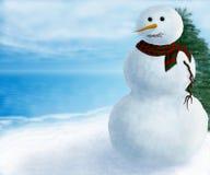 Muñeco de nieve por el lago Foto de archivo libre de regalías