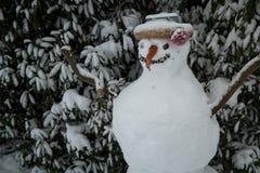 Muñeco de nieve que se coloca en un jardín Fotografía de archivo