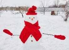 Muñeco de nieve real al aire libre fotos de archivo