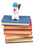 Muñeco de nieve suave sentido del juguete en la pila de libros Foto de archivo libre de regalías