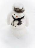 Muñeco de nieve triste Fotografía de archivo libre de regalías