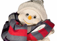 Muñeco de nieve y termómetro Imagen de archivo libre de regalías
