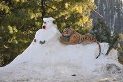 Muñeco de nieve y un tigre Foto de archivo