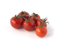 Muśnięcie pomidory odizolowywający na bielu Obraz Stock