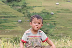 Mu Cang柴米大阳台领域的一个孩子 图库摄影