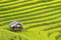 MU Cang Chai στοκ φωτογραφίες με δικαίωμα ελεύθερης χρήσης