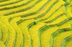 MU Cang Chai στοκ εικόνες με δικαίωμα ελεύθερης χρήσης