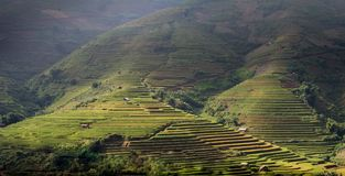 North VietNam. Mu cang chai provider ,Lao Cai , Viet Nam stock photos