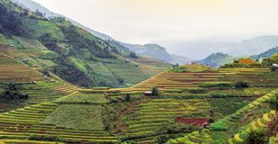 North VietNam. Mu cang chai provider ,Lao Cai , Viet Nam stock image