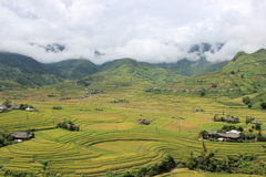 Mu Cang Chai Rice Terrace Fields. Mu Cang Chai is a district of Yen Bai province, Viet Nam. The rice terrace fields in La Pan Tan, Che Cu Nha and Ze Xu Phinh Royalty Free Stock Photo