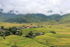 Mu Cang Chai Rice Terrace Fields. Mu Cang Chai is a district of Yen Bai province, Viet Nam. The rice terrace fields in La Pan Tan, Che Cu Nha and Ze Xu Phinh Stock Photo