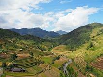 Mu Cang Chai - Tarasowi Rice pola Fotografia Stock