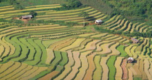 Mu Cang Chai terraces 09 Royalty Free Stock Images
