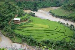 Mu Chang Chai rice terraced stock photography