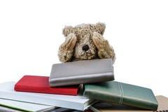 Mu?eca linda del oso marr?n con muchos libros aislados en el fondo blanco imágenes de archivo libres de regalías