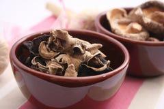 Mu-Err Mushrooms Royalty Free Stock Photo