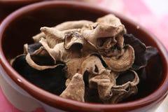 MU-errano i funghi Fotografie Stock