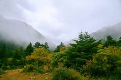 Wooden measure. Mu Ge (full name: Kangding love song Mu Ge scenic area), is located in the middle of the Gongga mountains, from Sichuan, Kangding, the Stock Image