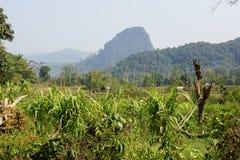 Muang Ngoi, Laos, Asia Royalty Free Stock Images