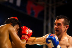 拳击手顶头muay打孔机冒汗了泰国 免版税库存图片