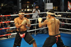 Muay Boran Fight Stock Photo