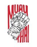 Muay thaï Images stock