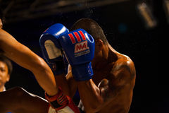 Muay Thai Boxing Sweat Flying Punch Royalty Free Stock Photography