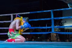 Muay Thai in Chiang Mai. Muay Thai fight in Chiang Mai.  A muay thai kickboxer kneels and covers his face with his gloves during a pre-fight Royalty Free Stock Photography