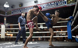 Muay Thai in Chiang Mai Stock Photo