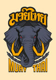 MUAY THAI ELEPHANT SACRED ANIMAL. Elephant an animal that honored and sacred in Thailand culture. This animal has related with many legend warrior as companion Stock Images