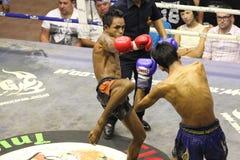 Muay Thai fight Stock Photography