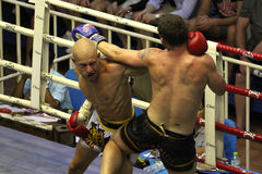 Muay Thai fight Royalty Free Stock Photos