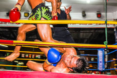 Muay thai fight Stock Photography