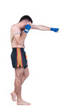 Muay Thai  fighter . Royalty Free Stock Images