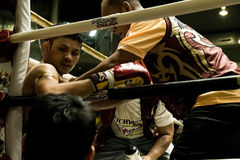 Muay Thai fighter. Indoor boxing stadium at Thailand Royalty Free Stock Photo