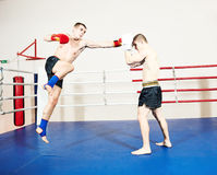 Muay thai fighters at boxing ring Royalty Free Stock Photo