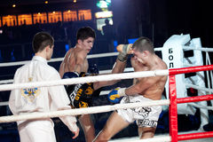 Muay Thai Royalty Free Stock Image