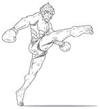 Muay Thai :hight kick Stock Image