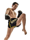 Muay Thai kickboxing kickboxer boxing man isolated Royalty Free Stock Images