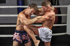 Muay Thai match Stock Photography